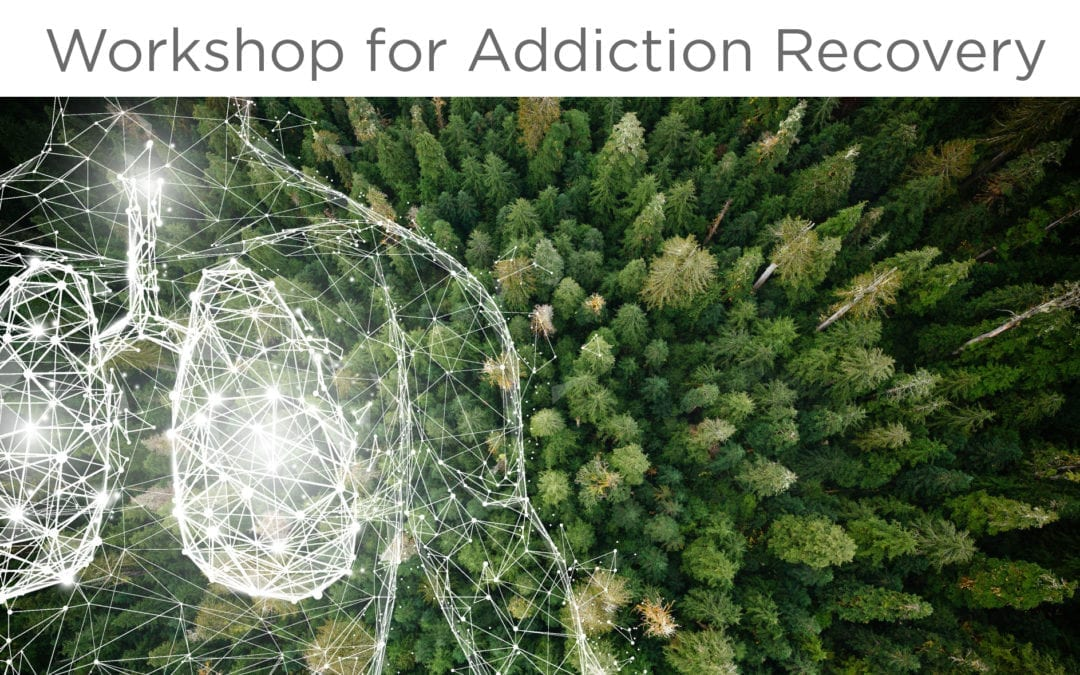 BCT for Addiction Recovery Workshop