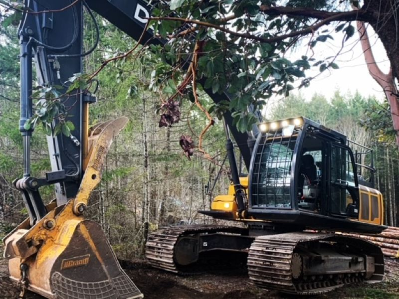construction in the forest