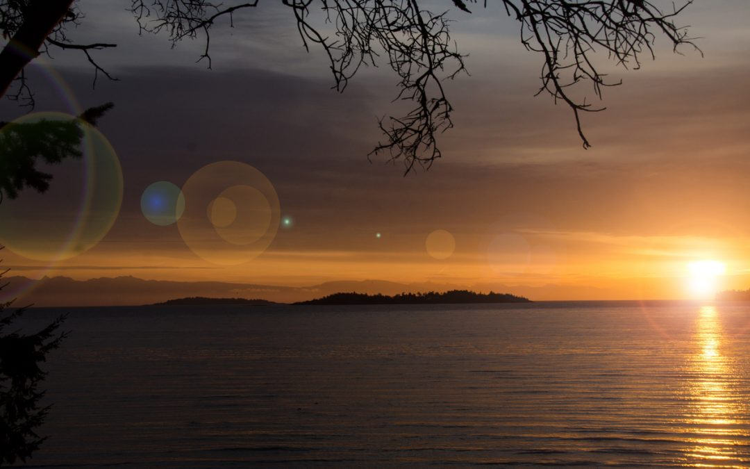 Two New Qualicum Lots
